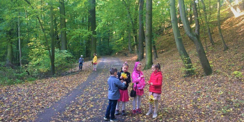 Sběr podzimních darů lesa 2. třída - ZŠ Compass